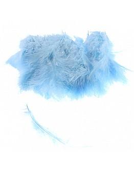Blau Feder für Besondere Dekoration 100 Stück