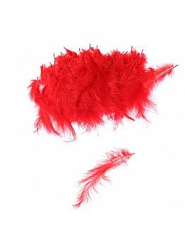 Rot Feder für Besondere Dekoration 100 Stück