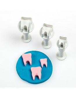 Zahn Formen Kleine